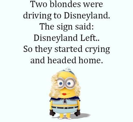 Disney land joke