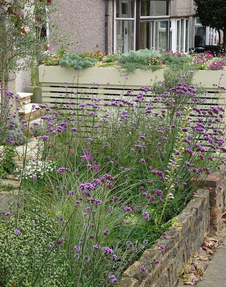 Fenton Roberts Garden Design, Planting and wheelie bin storage