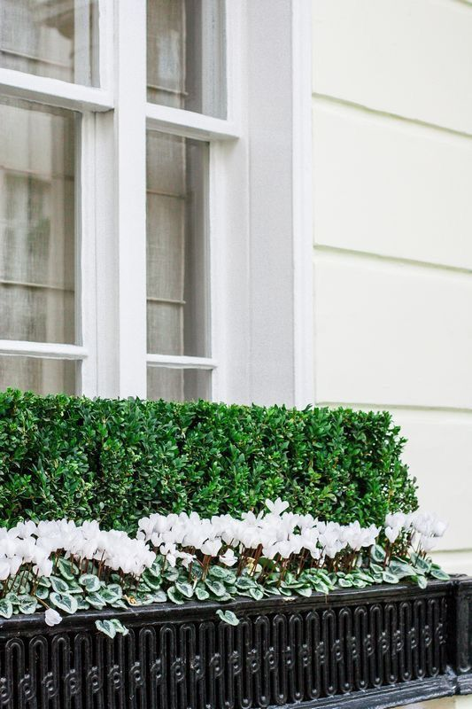 les 351 meilleures images du tableau jardini res balcons sur pinterest id es balcon. Black Bedroom Furniture Sets. Home Design Ideas