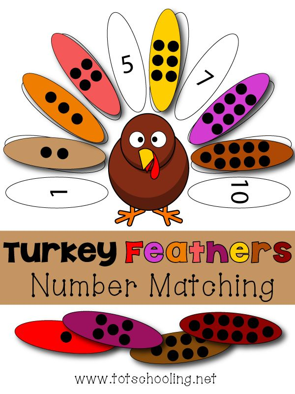 Turkey Feathers Number Matching Game