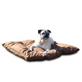 50 best K&H Pet Products On Sale! images on Pinterest ...