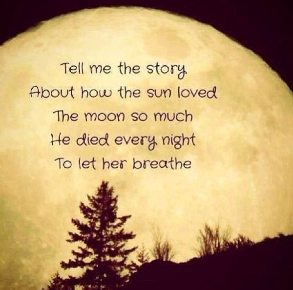 HOPELESS ROMANTIC Quotes Like Success