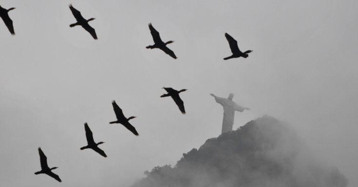 O tempo nublado muda a paisagem do Cristo Redentor, em Botafogo, zona sul do Rio de Janeiro (RJ). O tradicional ponto turístico da cidade amanheceu coberto de névoa e de pássaros biguás sobrevoando ao redor