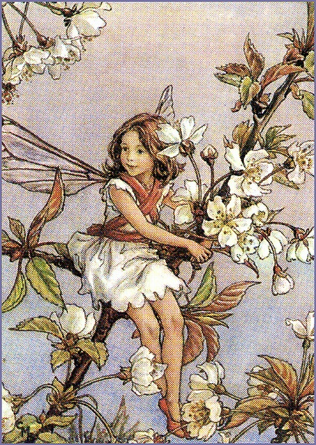 The Cherry Tree Fairy... We want to put a cherry tree in the corner and make the shed into a playhouse for the kids...