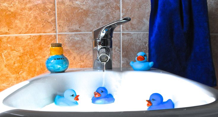 The four ducks in the bidet - Blu Bed and Breakfast