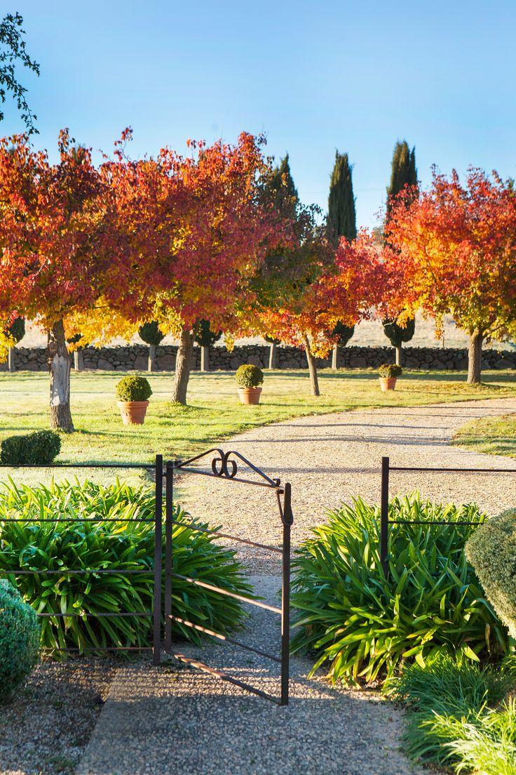 A country garden in central Victoria ablaze with fiery colour. Photography: Simon Griffiths | Story: Australian House & Garden