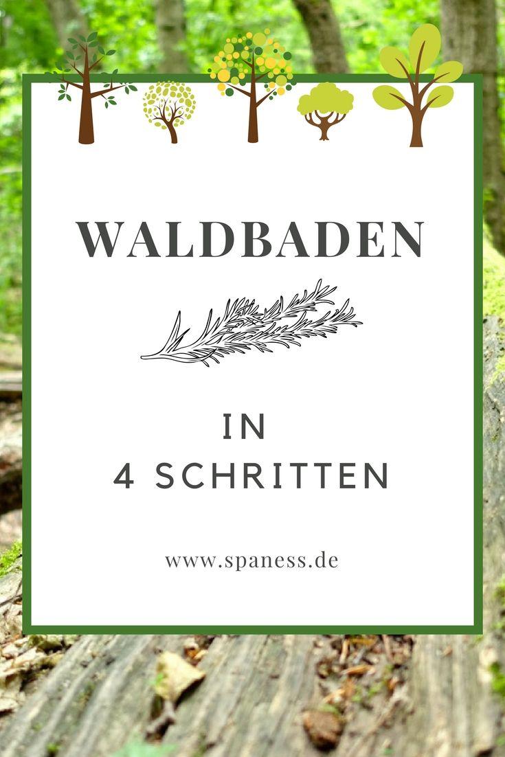 Wellness Blog: Willkommen im Wald.