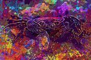 """New artwork for sale! - """" Close Up Crab by PixBreak Art """" - http://ift.tt/2tT44sH"""