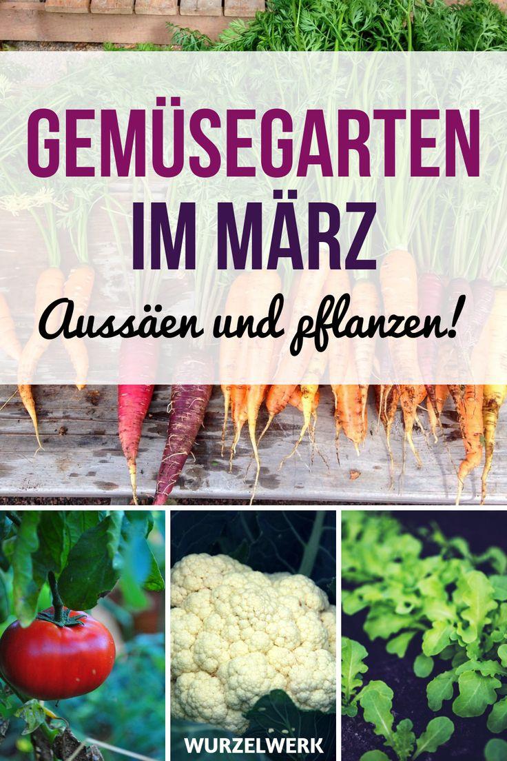 Aussaat & Pflanzen im März + Beispiel-Pflanzplan ...