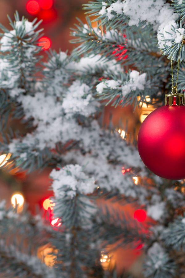 Augenbrauen-Trend: Tannenbaumkugeln   Weihnachten