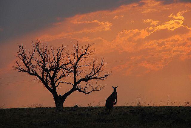 Sunset Canberra Australia