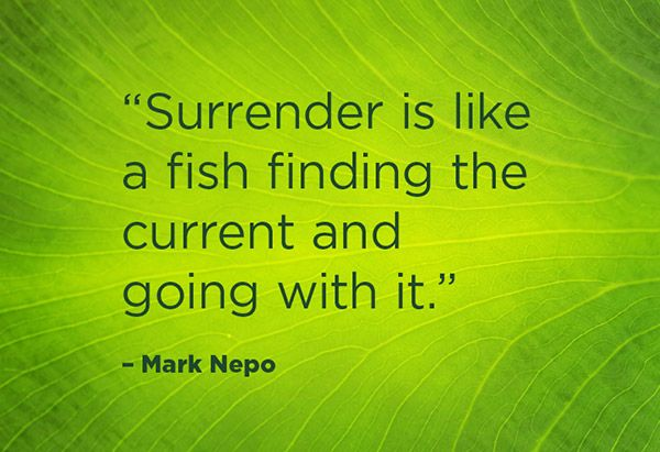 """Surrender is like a fish finding the current and going with it."""