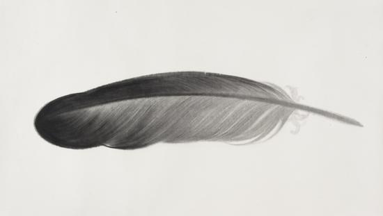 羽毛系列 102x182cm 宣纸水墨 2016