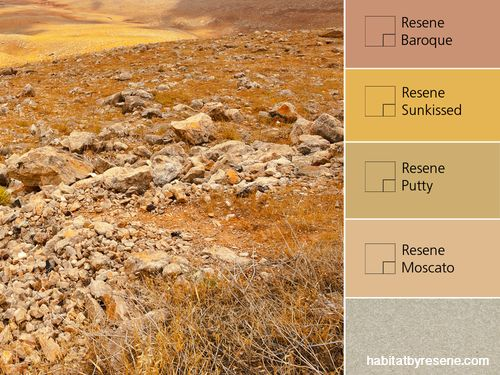 Rocks and suntanned tussock soak in the warmth of the sun, creating a palette of golden hues and beige-y neutrals.