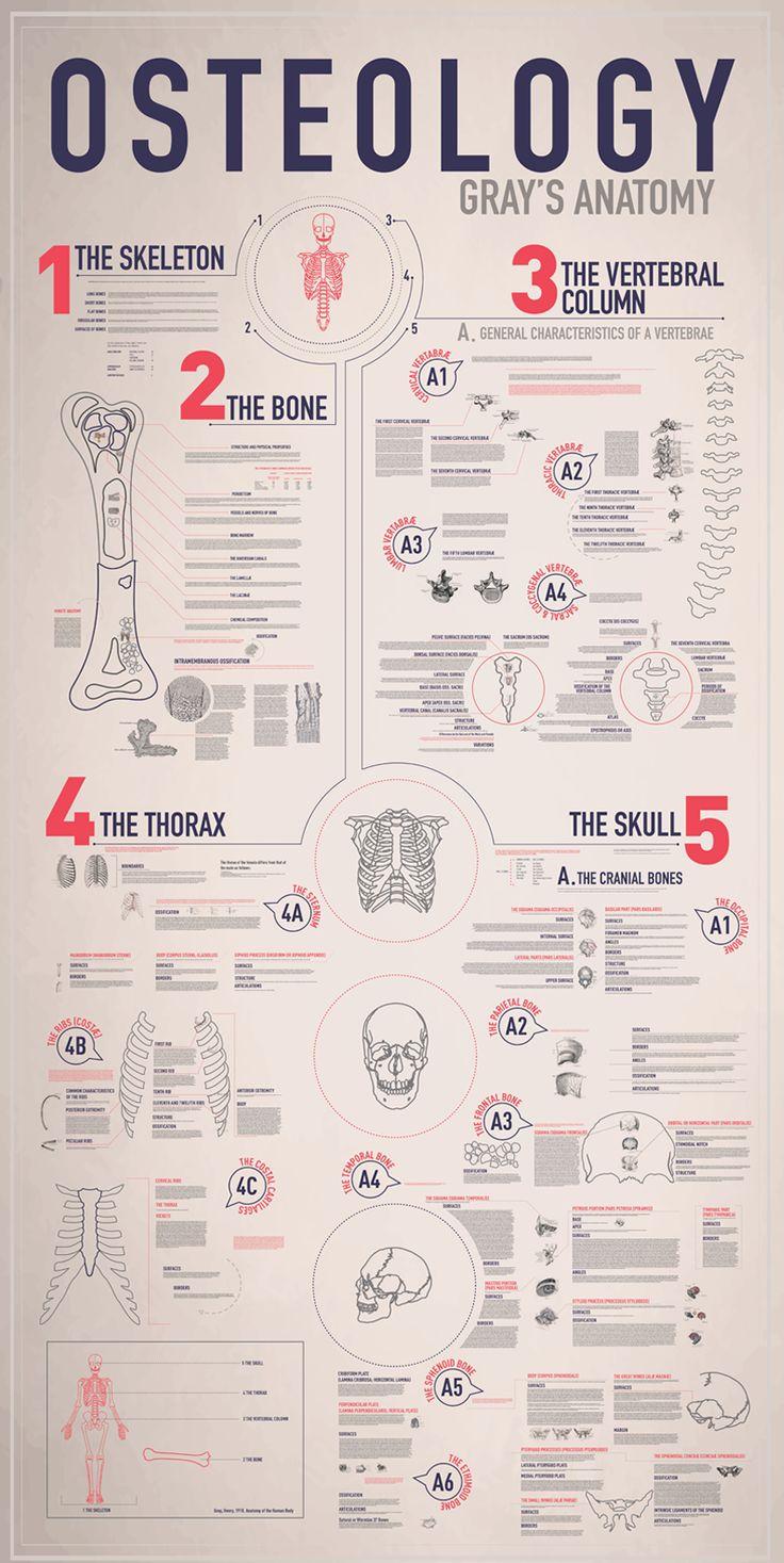 Emmy De Leon graphic infographics Los angeles