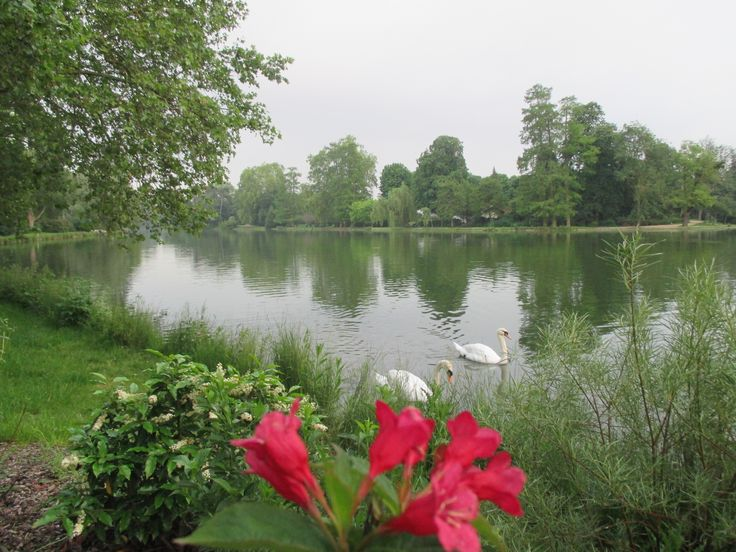 Lac Daumesnil * with 2 swans