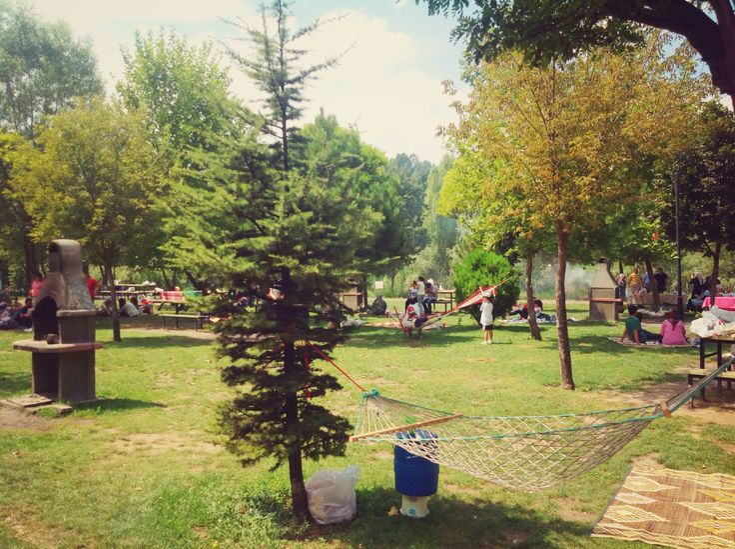 Regülatör Piknik Alanı