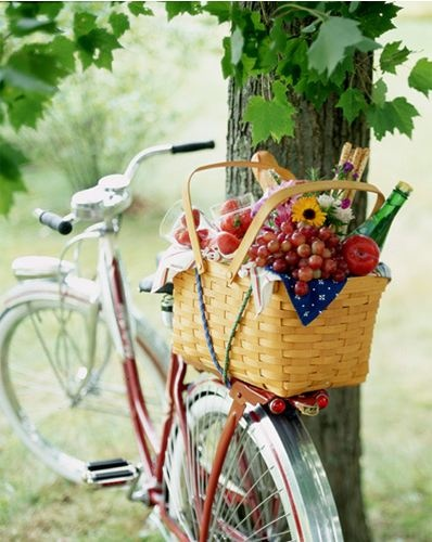 Picnic and wine basket on Mykel's bike for garden flavor an invitation to a shared moment