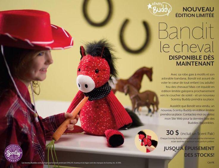 Voici Bandit le nouveau  buddy disponible pour un temps limité faite vite 418-860-8854 ou tigalop@live.ca .ou cliquer sur mon site internet et vous pouvez magasiner et recevoir vos articles directement chez vous