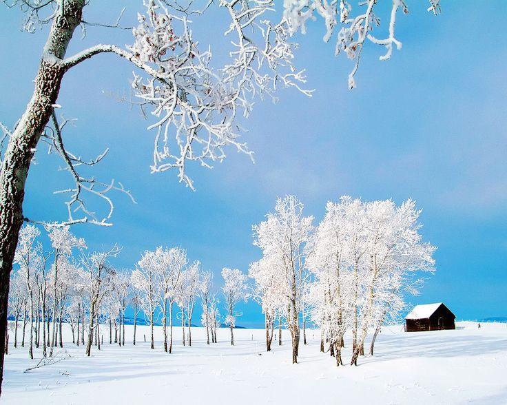 ree Full Screen Winter Wallpaper Winter Widescreen Pics