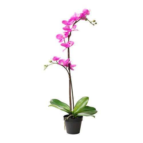 IKEA - FEJKA, Artificial potted plant, Lifelike artificial plant that remains looking fresh year after year.