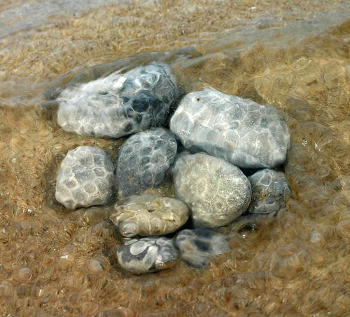 Best Beaches In Michigan For Petoskey Stones