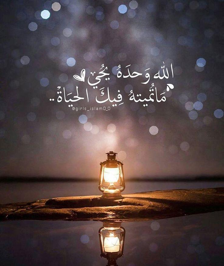 DesertRose,;,كن مع الله,;,