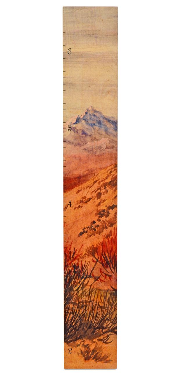 70 best our growth charts images on pinterest wood growth charts big mountain growth wooden height chart nvjuhfo Gallery