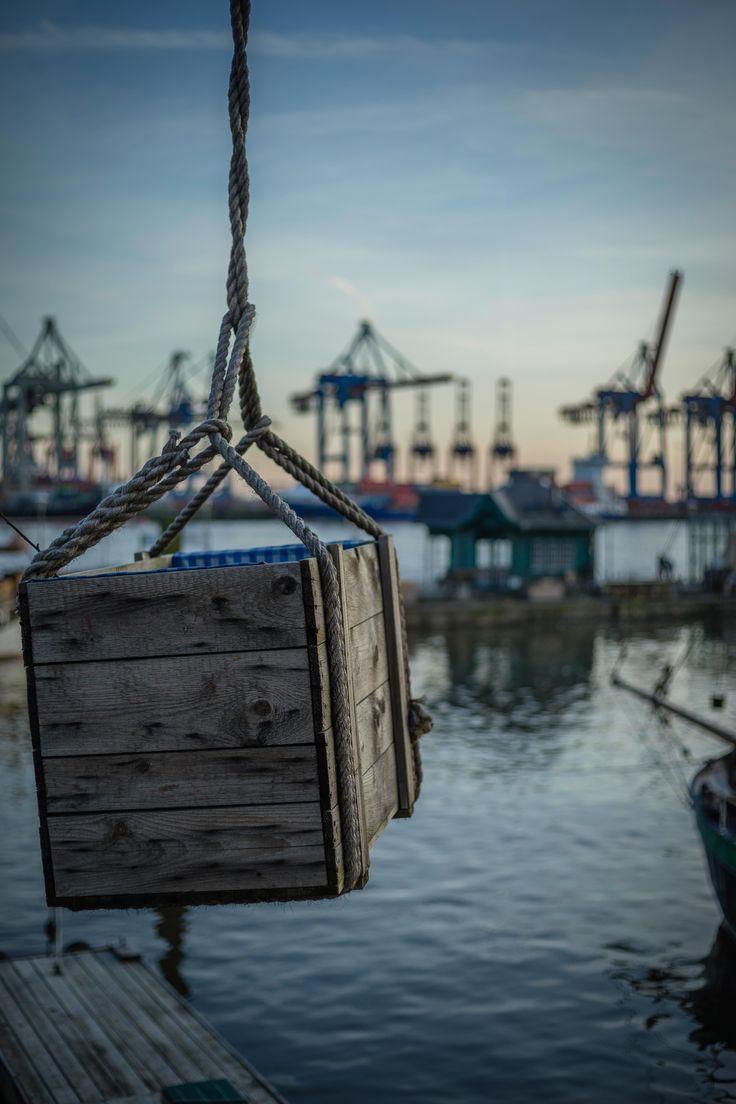 Das Seil hält | Bildschönes Hamburg