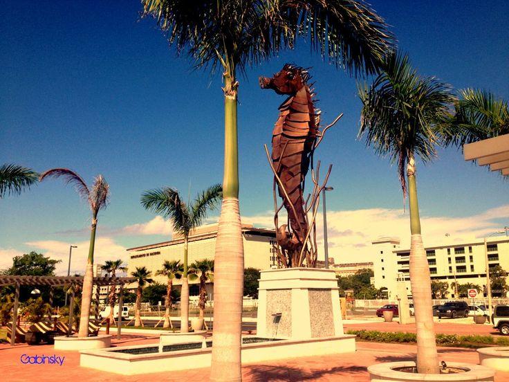 November 23, 2012 at 12:00pm ·  Escultura en bronce de un Hipocampo o Caballito de Mar, se le se lo considera símbolo de la fidelidad y la lealtad, Paseo Gilberto Concepción de Gracia, Bahía Urbana. — at Bahia Urbana-Viejo San Juan.