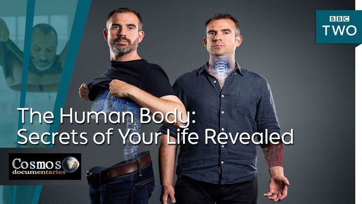 The Human Body: Secrets of Your Life Revealed (2017) Documentary Series