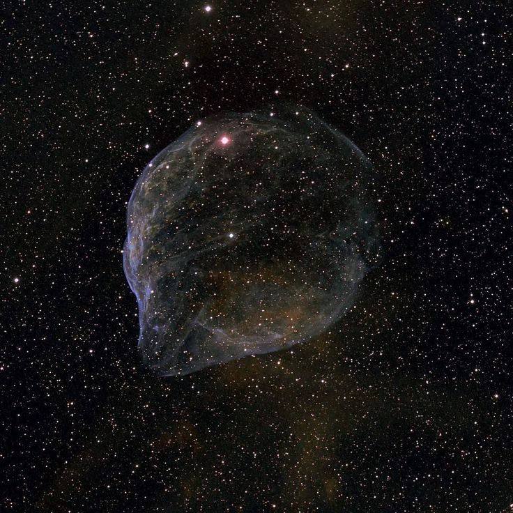 You'd like this one by astrophotographyarchive #astrophotography #contratahotel (o) http://ift.tt/1Q4sLD4 by fast winds from a hot massive star this cosmic bubble is huge. Cataloged as Sharpless 2-308 it lies some 5200 light-years away toward the constellation of the Big Dog (Canis Major) and covers slightly more of the sky than a Full Moon. That corresponds to a diameter of 60 light-years at its estimated distance. The massive star that created the bubble a Wolf-Rayet star is the bright…