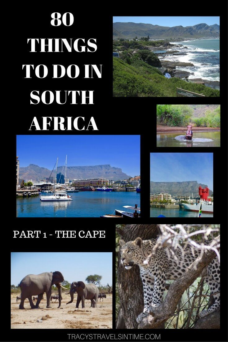 Planning a visit to South Africa? Thinking of what to add into your itinerary? Well have a look at 80 things to do and see in South Africa! This is the first 20 - things to see and do in the Western, Eastern and Northern Cape!