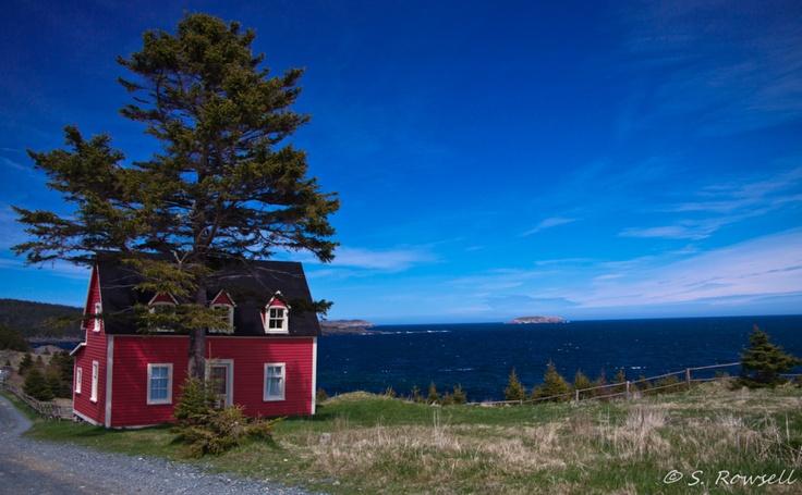 Tors cove Newfoundland