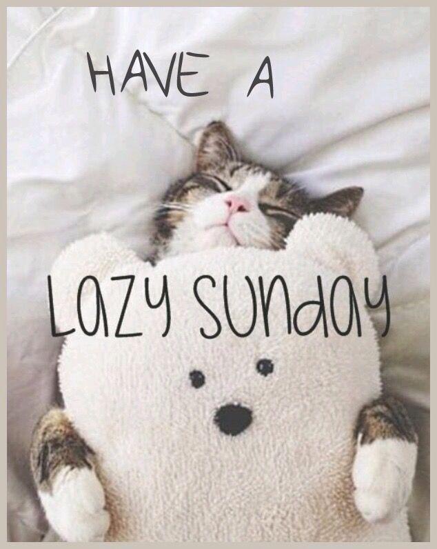 Have A Lazy Sunday sunday sunday quotes sunday images sunday pictures sunday quotes and sayings