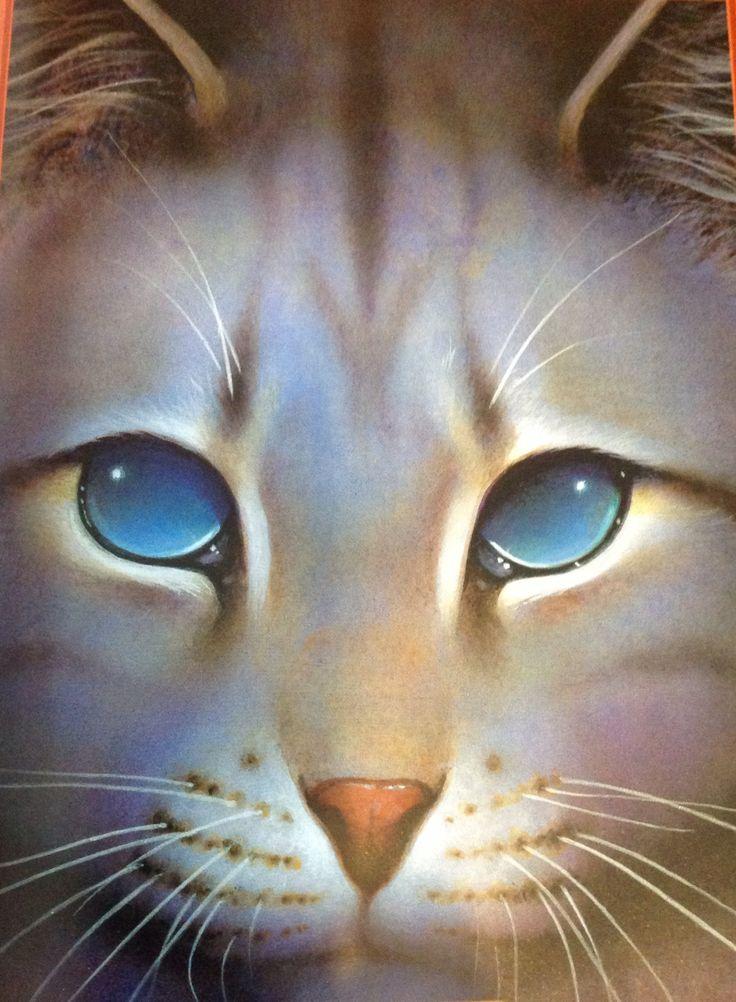 35 Best Ideas About Jayfeather On Pinterest Cats