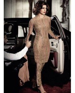 Dull Gold Embroidered Net Straight Suit