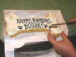 Another doggy cake alternative