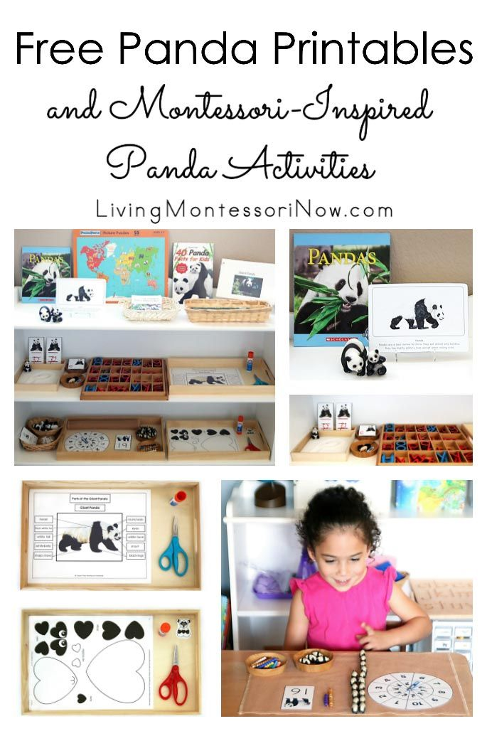 Free panda printables and Montessori-inspired panda activities for multiple ages; perfect for home or classroom; great for Chinese New Year, China unit study, or bear unit study - Living Montessori Now #Montessori #homeschool #pandatheme #freeprintables #ChineseNewYear #preschool #kindergarten