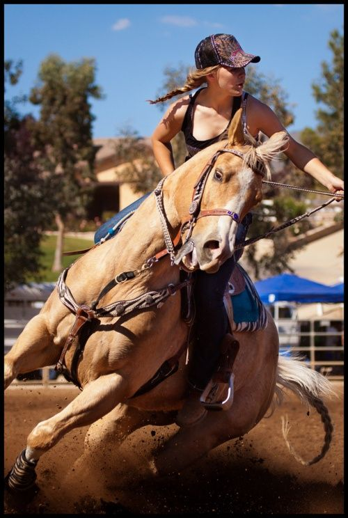 I have always wanted to learn to barrel race