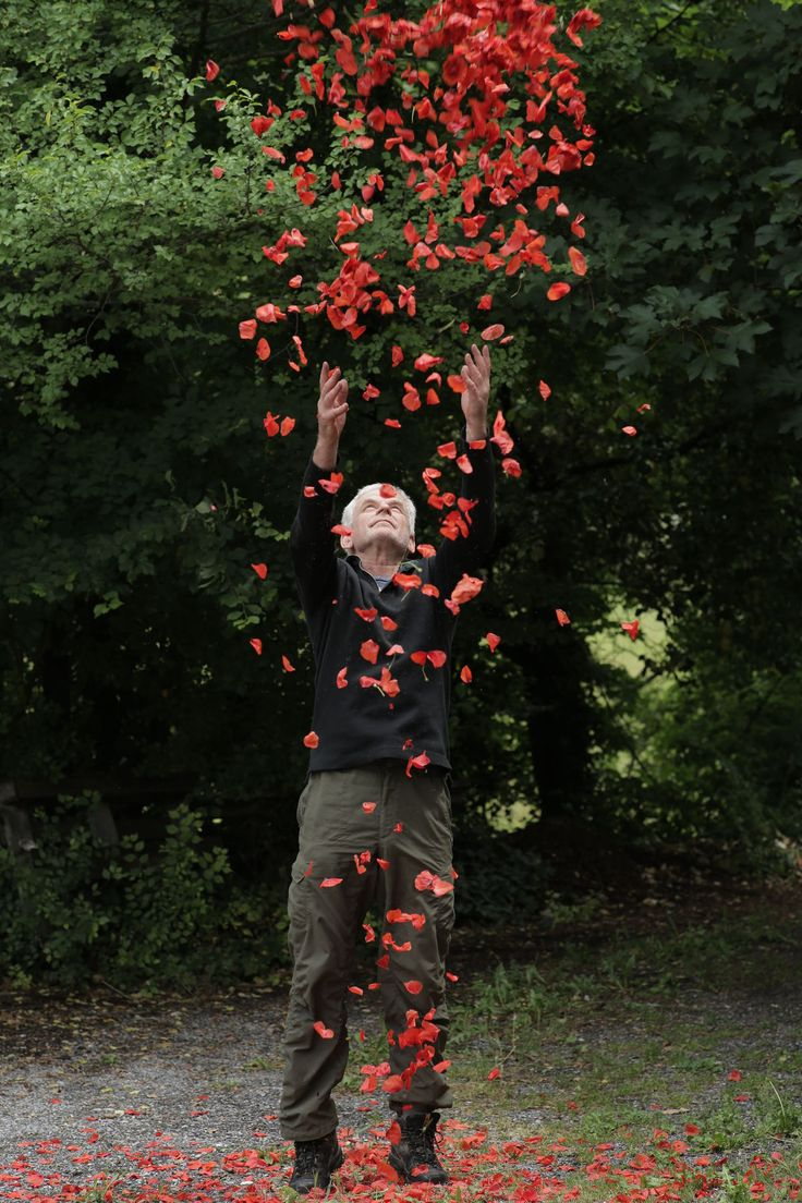 Andy Goldsworthy in Leaning into the Wind, a Magnolia Pictures release. © Thomas Riedelsheime, all rights reserved. Courtesy of Magnolia Pictures.