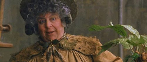 Professor Sprout probably grows weed, and she probably shares it with those in need. | 19 Reasons Everyone Should Want To Be A Hufflepuff