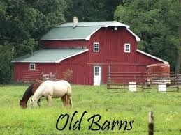 "all barns should be ""red"""