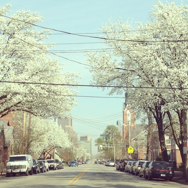 17 best images about columbus our city on pinterest for Columbus spring