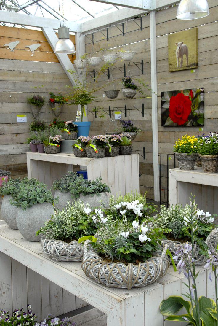Plantenbakjes voor buiten , Intratuin  's-Gravenzande