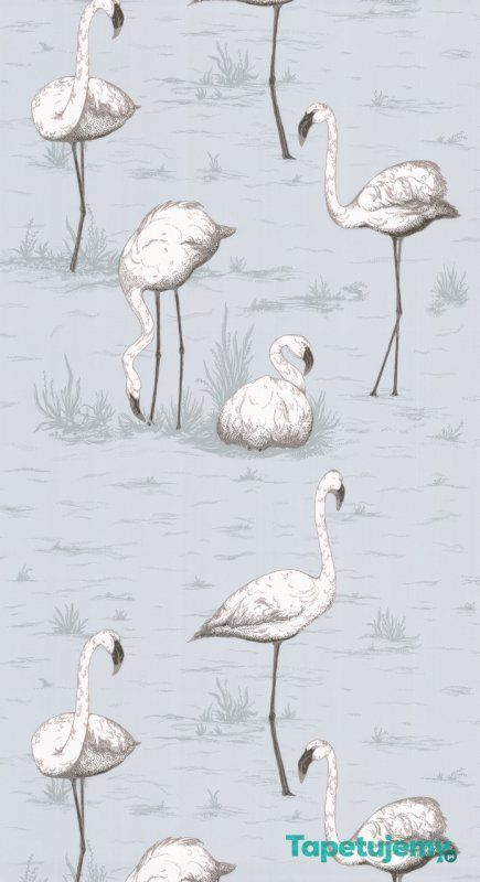 Tapeta Cole & Son - Contemporary Restyled - Flamingos - 95 8047 - Contemporary Restyled - Cole & Son - Tapety dekoracyjne