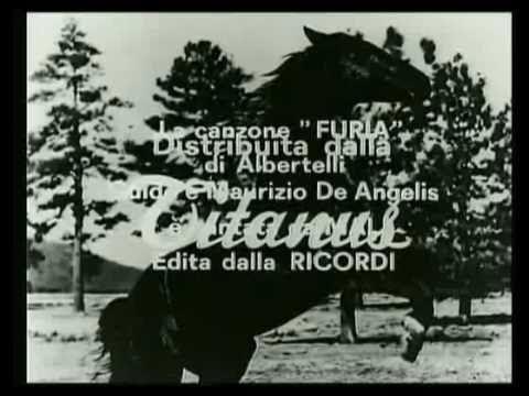 Furia il cavallo del west, che beve solo caffè per mantenere il suo pelo più nero che c'è!