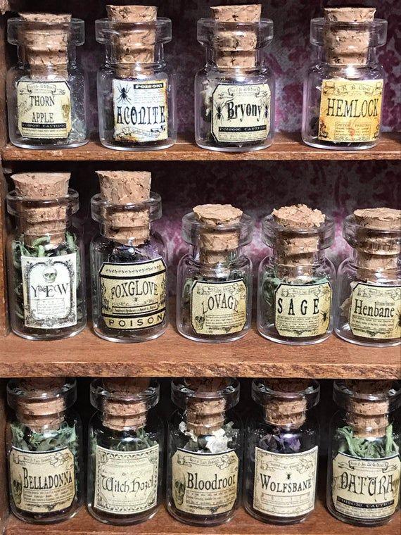 Mini Witch Hazel Halloween Witches Brew Magic Bottle 1:12 Dollhouse Miniatures