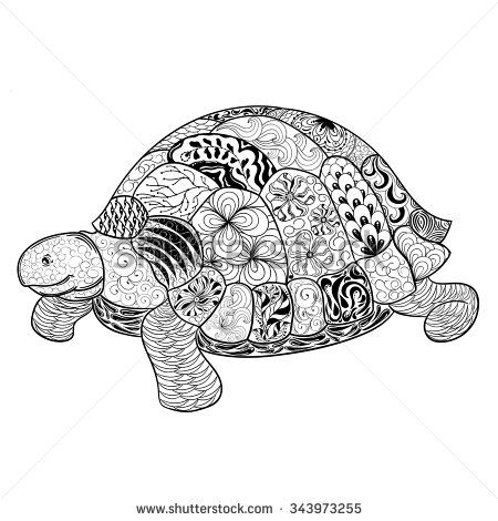 painted turtle coloring page - 31 best tortoise tattoo images on pinterest turtles