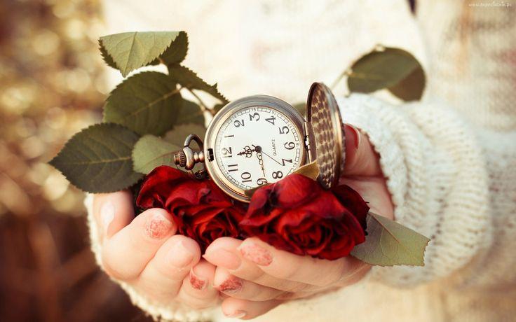 Czerwone, Róże, Zegarek, W, Dłoniach, Kobiety